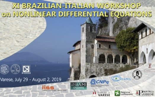XI Workshop in Nonlinear Differential Equations